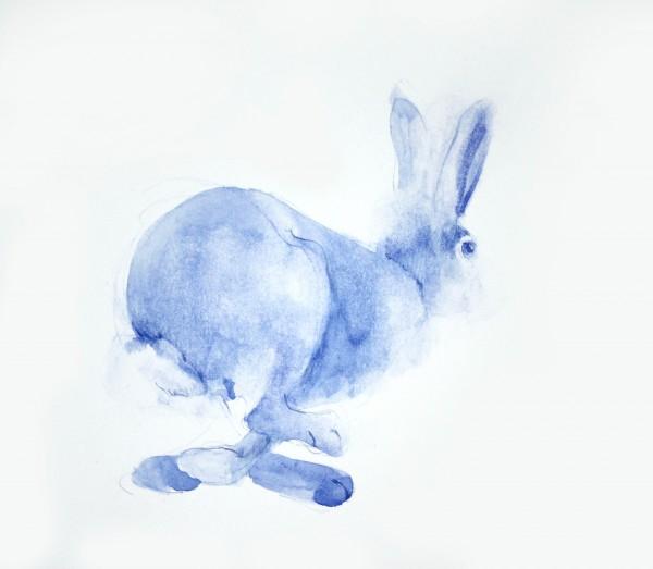 gurvich Lièvre 2018 ( série mammals) jpg